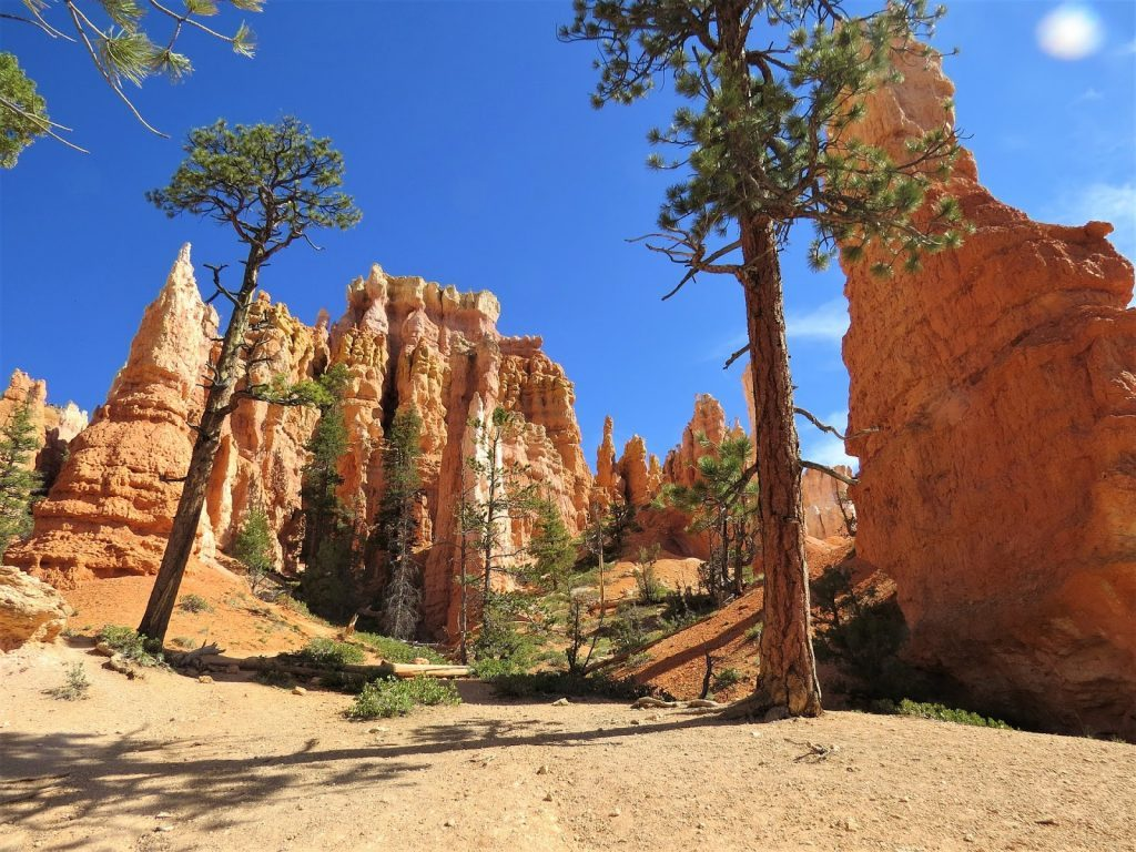 Road trip Four Courners - Bryce Canyon Nasjonalpark
